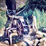 Das zerbrochene Ringlein - Joseph von Eichendorff